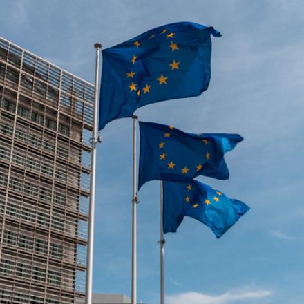 SEO analýza marketingových kampaní myTimi je financována EU